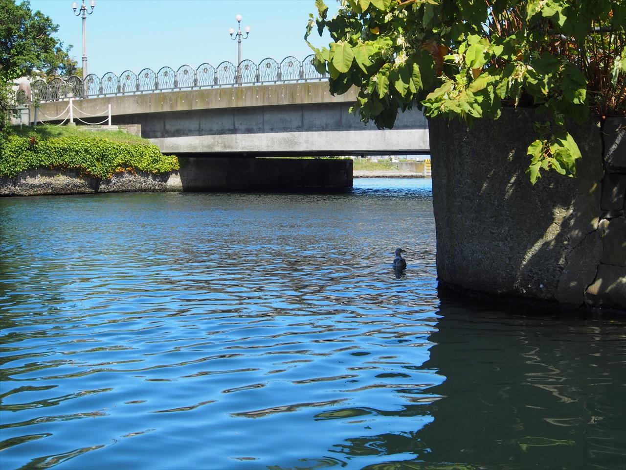 小樽港へと続く水路