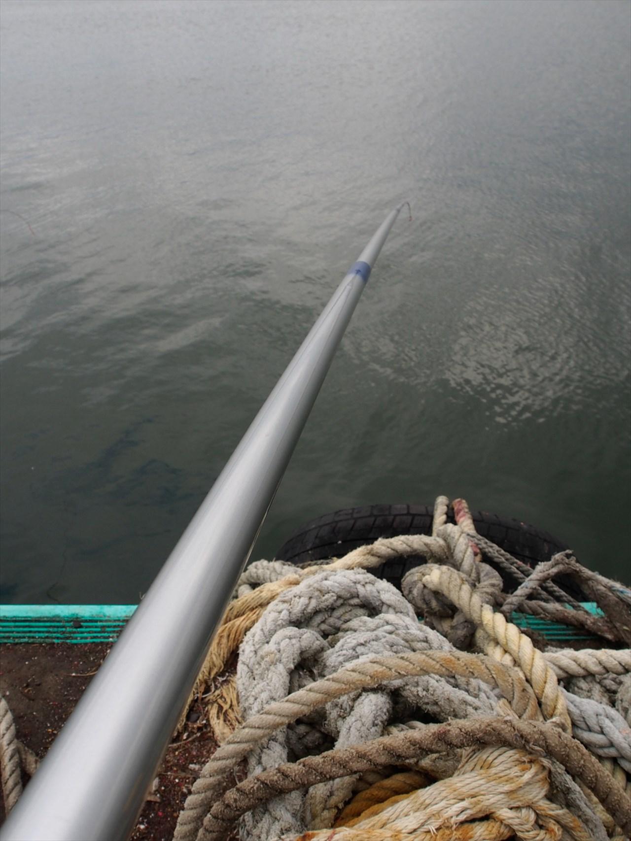 垂れ下がる釣り竿