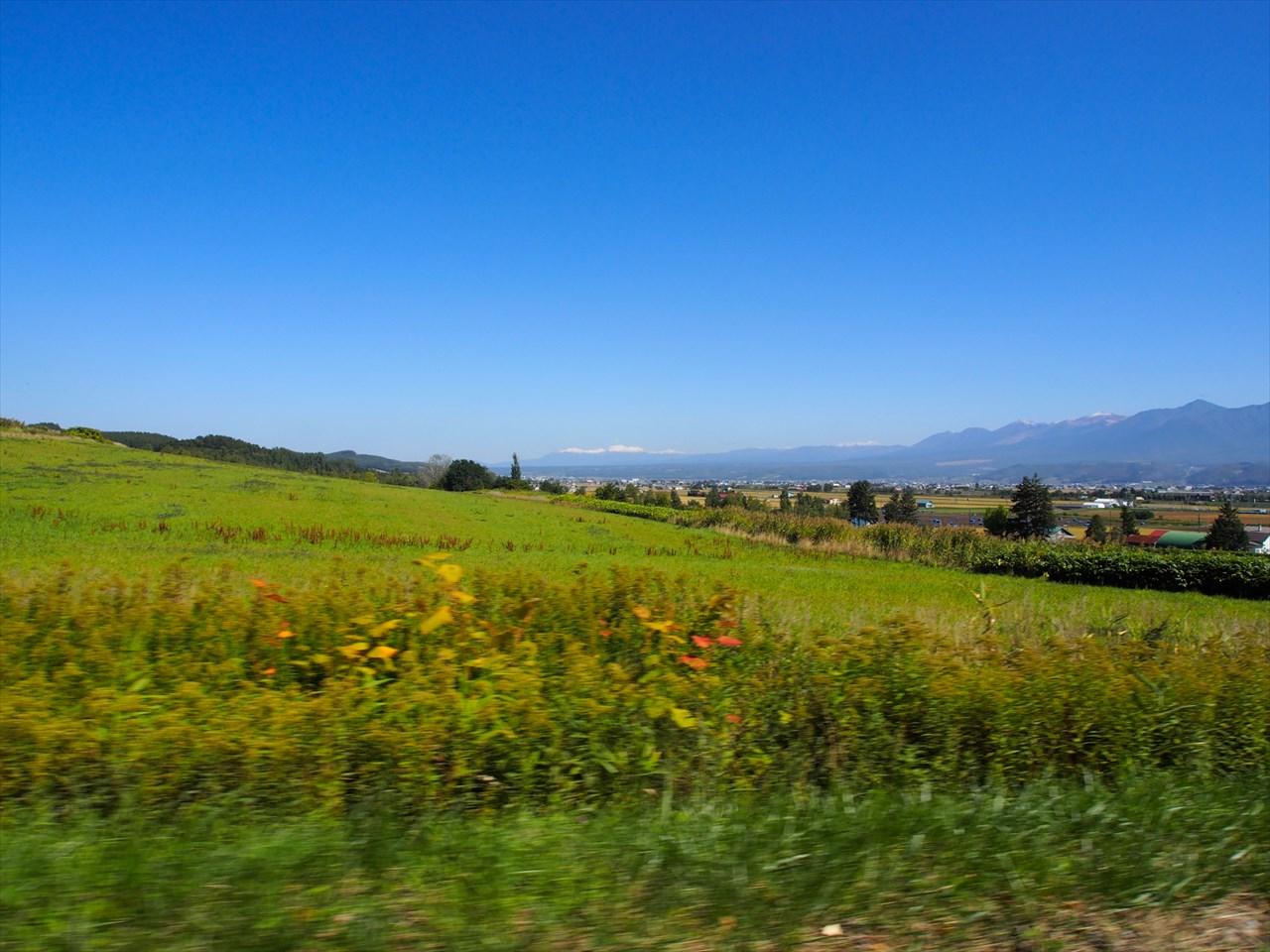 富良野のドライブ風景