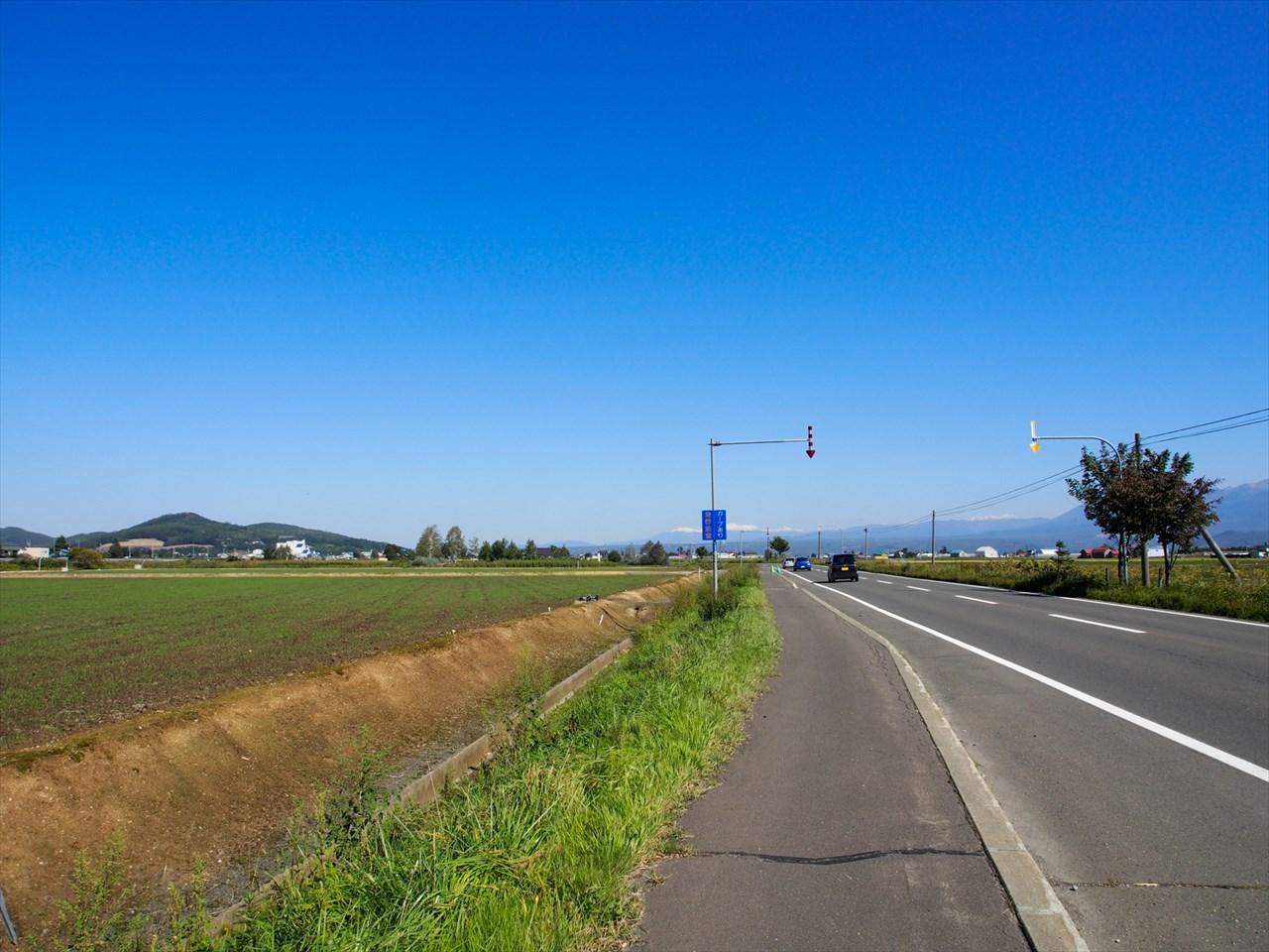 富良野の国道237号線