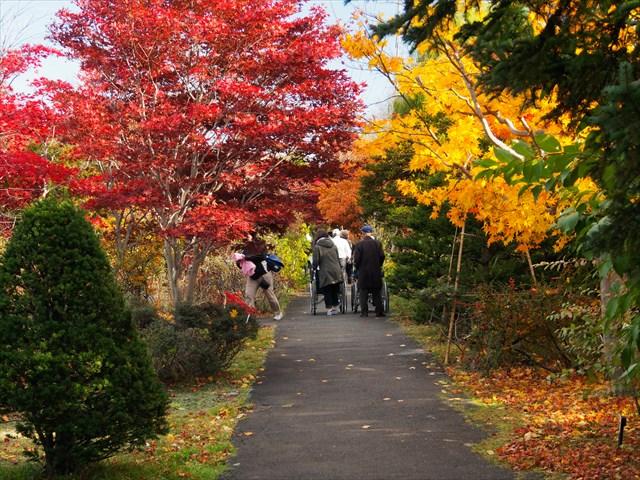 秋の庭園を歩く年配の方々