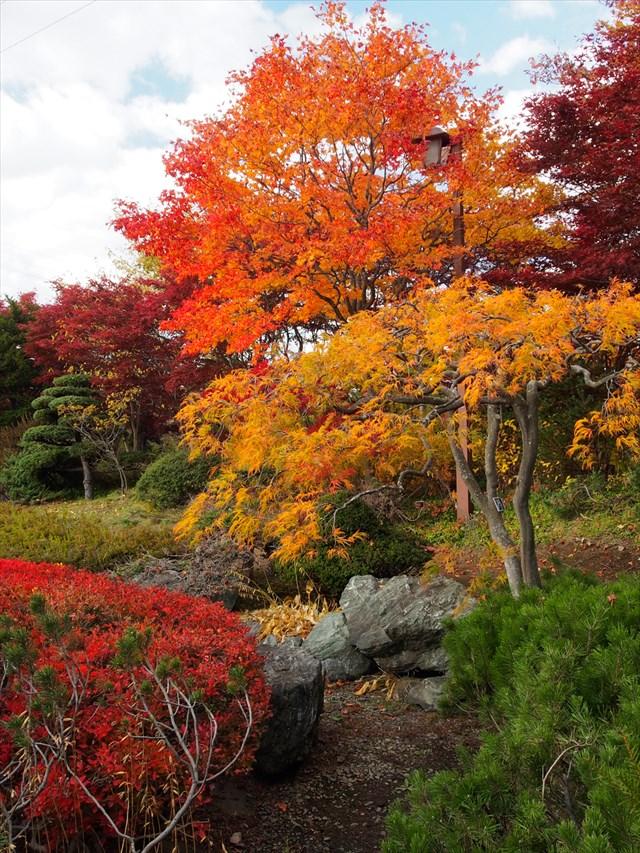 落ち着いた佇まいの日本庭園