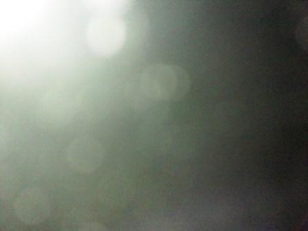 DSC_0451web.jpg