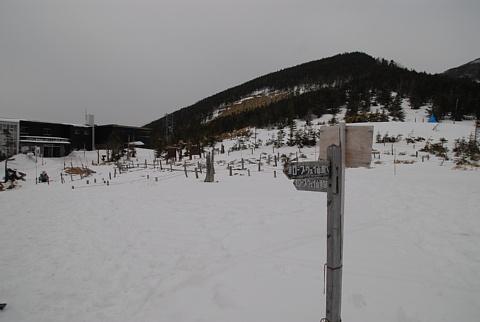 20100315-23.jpg