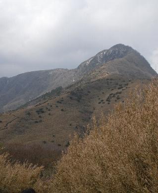 20100418-16.jpg