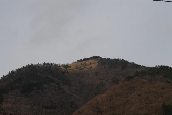 20100418-22.jpg
