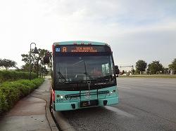 DSC05826.jpg
