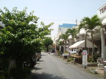 avenue4.jpg