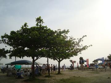 beachparty1.jpg