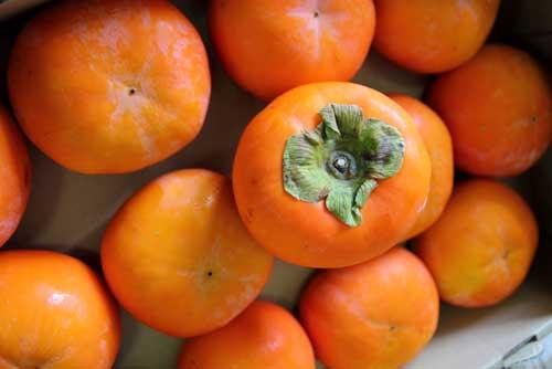 三重県の柿