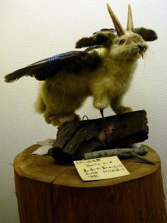 ドイツの伝説獣 ヴォルペル・ティンガー