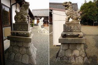 八坂神社の狛犬