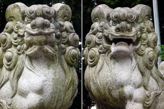 金幣社白山神社の狛犬
