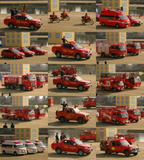 平成23年岡崎市消防出初式 分列行進