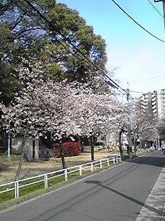 100402-02yamasaka1.jpg