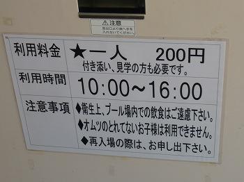 P1100165.jpg