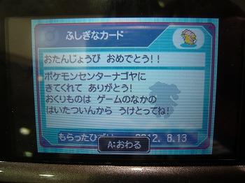 P1100438.jpg