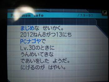 P1100486.jpg