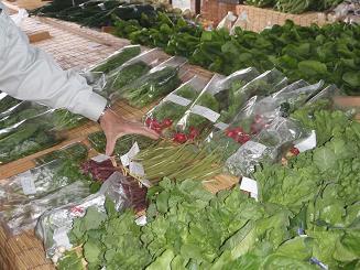 楽菜の野菜たち