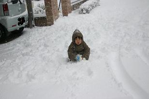 1231雪