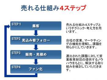 2_20110212125808.jpg