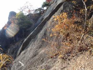 20101127-10.jpg