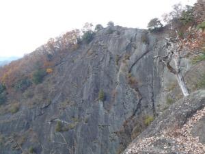 20101127-8.jpg