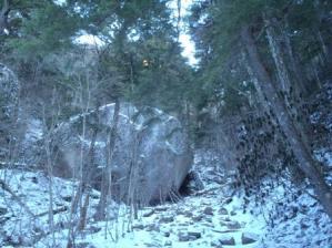 20110110-2.jpg