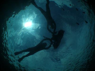送迎付き青の洞窟ダイビング