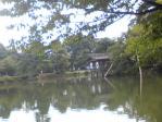 Image933池