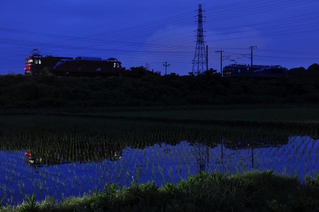 DSC_5363.jpg