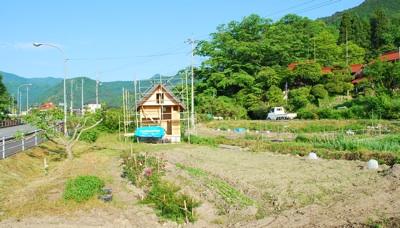 小屋とバラ20100603