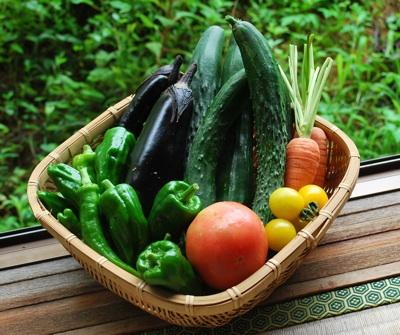 野菜0714