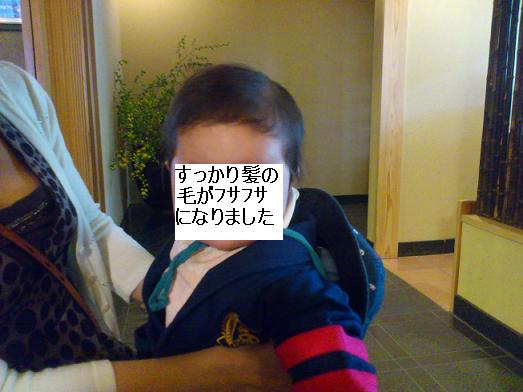DSC_2401.jpg