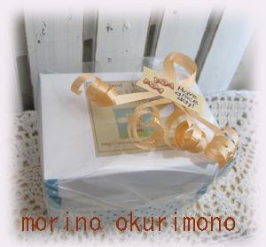 IMG_7046のコピー