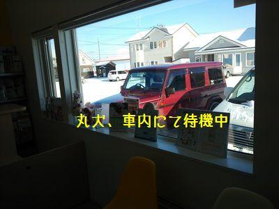 DSC_0214N.jpg