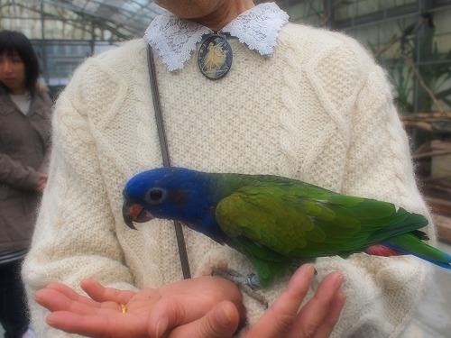 2003.3.6 花鳥園 256
