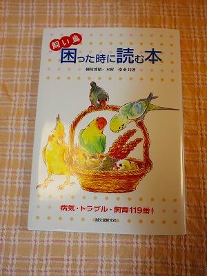 item87013 (8)