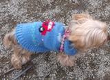 犬用ニット服