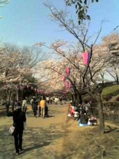 maruyama1.jpg
