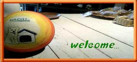 welcomever7.jpg