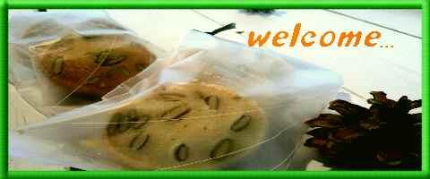 welcomever7