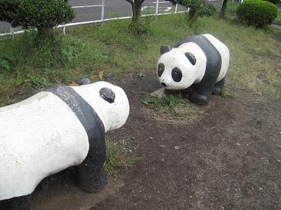 パンダのつがい