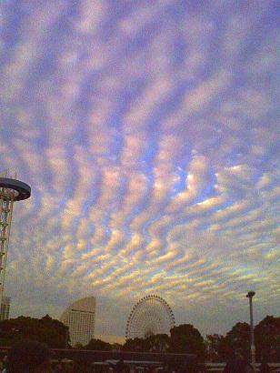 横浜オクトーバーフェスト2012ハリネズミ2
