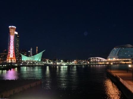 夜 オリエンタル&ポートタワー