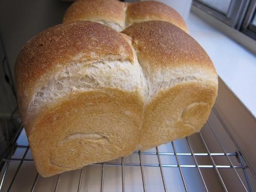081510 ミックス酵母食パンSMALL