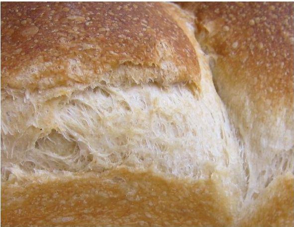 酵母パンアップ