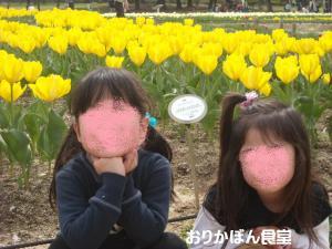 20100405-0.jpg