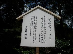 20100811-10.jpg