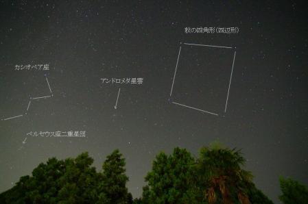 2_20101006223640.jpg